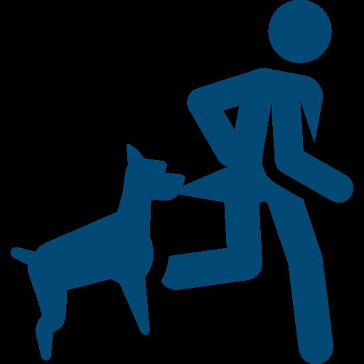 mordidas de perro